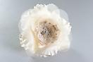 Flor Bella Off White